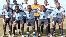 Les Zèbres du Botswana