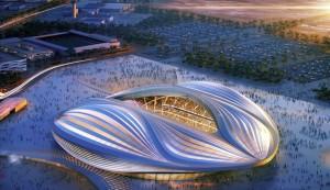 Qatar 2022 vagin