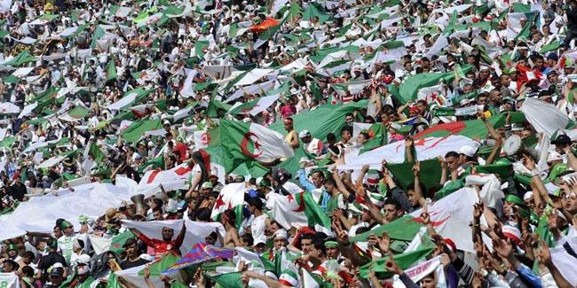 algerie-belgique1