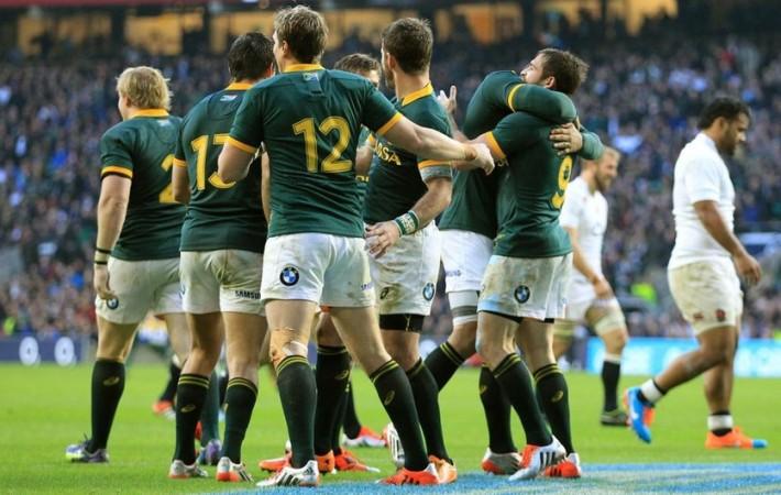 le springboks celebre leur victoire contre le xv de la rose tourne d'automne