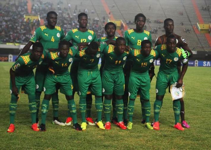 Lionceaux du Sénégal