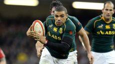 Coupe-du-Monde-de-rugby-l-Afrique-du-Sud-l-ogre-de-la-poule-B