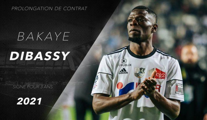 Dibassy